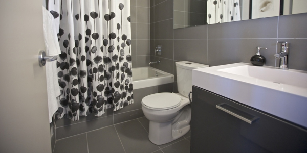 Toilet Serenity